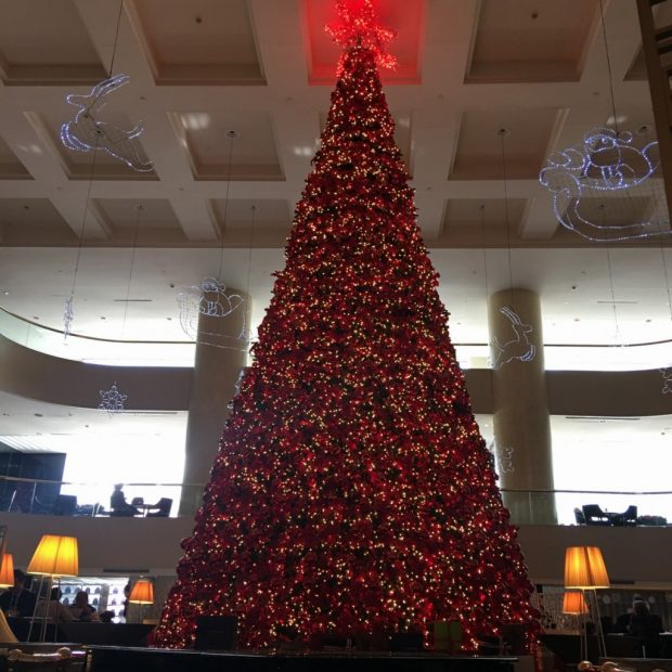 Christmas Tree in Atrium